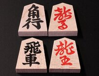 Wooden Shogi Pieces in Box - Stamped, Aoka Wood