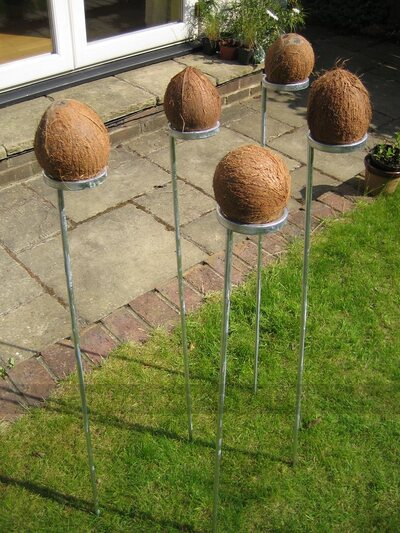 Set of 5 coconut shy posts