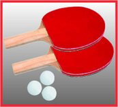 Butterfly Family Table Tennis Table - 4 ft 6