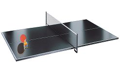 9 x 5 Table Tennis Top